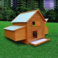 Wooden pet house hen house size 160x 98x 108cm 06-0032 Chicken Cage: Wooden Hen Coop Egg House Chicken house