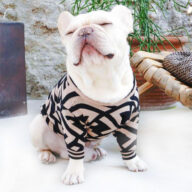 Pet Apparel, French Bulldog Clothes Pets 06-1342