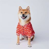 Fashion Dog Clothes: Designer Coat Pupreme Jacket Winter