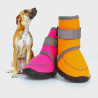 Wholesale Pet shoes 06-0998