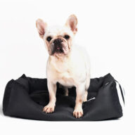 Dog Bag & Mat: Pet Products, Dog Goods Factory Supply Wholesale Luxury Pet Bed Soft Square Elegant Noble Series Dog Bed Factory Supply Wholesale Luxury Pet Bed Soft Square Elegant Noble Series Dog Bed